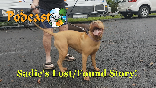 Sadie - Lost Then Found!